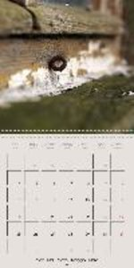 Passion for detail (Wall Calendar 2015 300 × 300 mm Square)