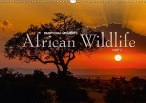 Emotional Moments: Africa Wildlife Part 2 UK (Wall Calendar 2015