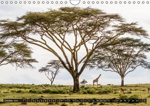 Kenya 2016 / UK-Version (Wall Calendar 2016 DIN A4 Landscape)