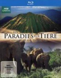 Ein Paradies für Tiere - Afrikas wildes Herz