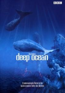 Deep Ocean - Atemberaubende Reise in die faszinierenden Tiefen d