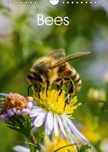 Bees (Wall Calendar 2015 DIN A4 Portrait)