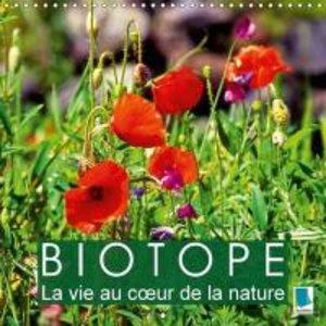 Biotope - La vie au coeur de la nature (Calendrier mural 2015 30