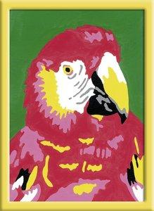 Papagei. Malen nach Zahlen Serie F
