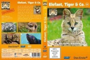 Elefant, Tiger & Co. 24. Zur Sache, Kätzchen