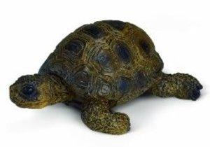 Schleich 14404 - Farm Life: Schildkröte