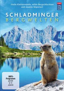 Schladming-Tor Zu Den Alpen