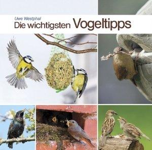 Die wichtigsten Vogeltipps