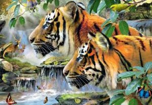 Bengaltiger. Puzzle 1500 Teile