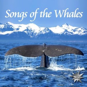 Songs Of The Whales
