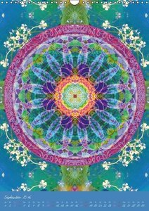 Mandala Energien (Wandkalender 2016 DIN A3 hoch)