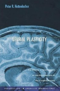 Neural Plasticity: The Effects of Environment on the Development