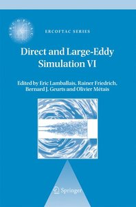 Direct and Large-Eddy Simulation VI