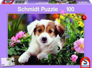 Hund Baboo, 100 Teile Puzzle
