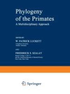 Phylogeny of the Primates