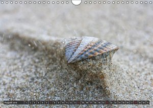 Langeoog, Impressionen einer ostfriesischen Insel (Wandkalender