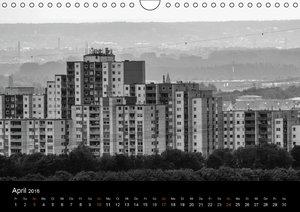 Der Stadtschleicher (Wandkalender 2016 DIN A4 quer)