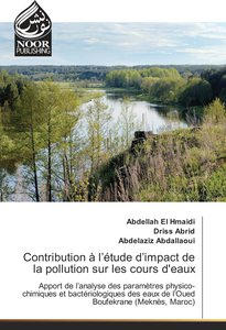 Contribution à l\'étude d\'impact de la pollution sur les cours