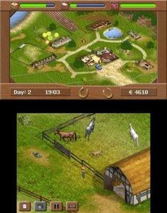 Meine Pferde-Praxis 3D (Software Pyramide)