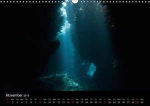 Sven Gruse Under Water! Fish Shooting (Wall Calendar 2015 DIN A3