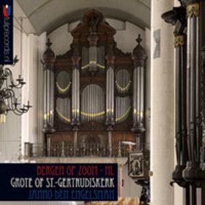 Grote of St.Gertrudiskerk Bergen op Zoom