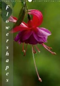 Schumann, B: Flower Shapes / UK-Version / Organizer