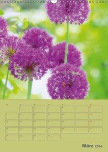 Naturbilder (Wandkalender 2016 DIN A3 hoch)