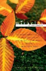 Miracles of November