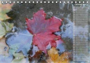 Silenzio - Kraft durch Ruhe (Tischkalender 2016 DIN A5 quer)