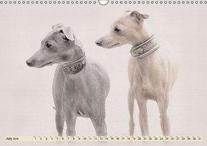 Italian Greyhounds 2015 (Wall Calendar 2015 DIN A3 Landscape)