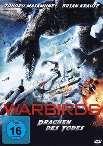 Warbirds (DVD)
