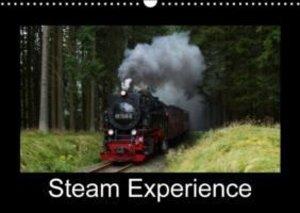 Steam Experience (Wall Calendar 2015 DIN A3 Landscape)