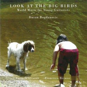 Look at the Big Birds
