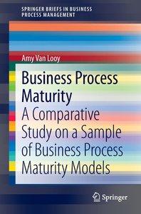 Business Process Maturity