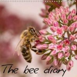 The bee diary (Wall Calendar 2015 300 × 300 mm Square)