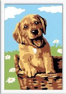 Ravensburger 29532 - Hund im Korb, MNZ, Malen nach Zahlen