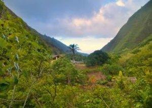 Unique Hawaii (Poster Book DIN A4 Landscape)