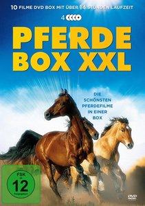 Pferdebox XXL