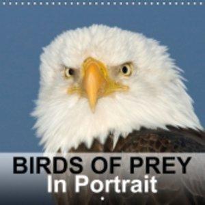 Birds Of Prey In Portrait (Wall Calendar 2015 300 × 300 mm Squar