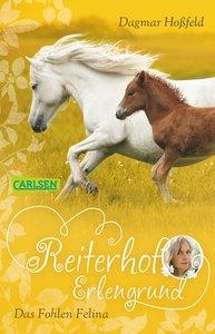 Reiterhof Erlengrund 04: Das Fohlen Filina