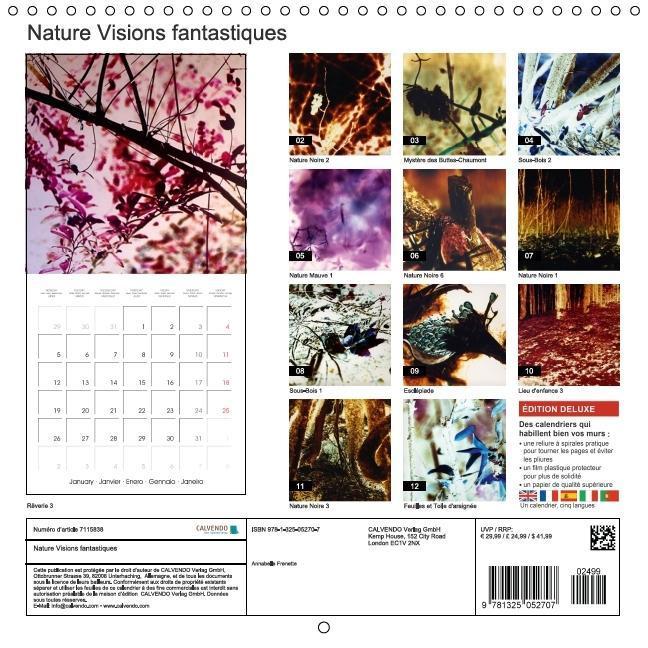 Nature Visions fantastiques (Calendrier mural 2015 300 × 300 mm - zum Schließen ins Bild klicken