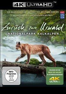 Zurück zum Urwald-Der Nationalpark Kalkalpen