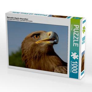 Steinadler (Aquila chrysaetos) 1000 Teile Puzzle quer