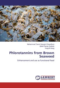 Phlorotannins from Brown Seaweed