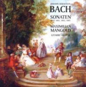 Sonaten BWV 1001,1003,1005 in Transkription