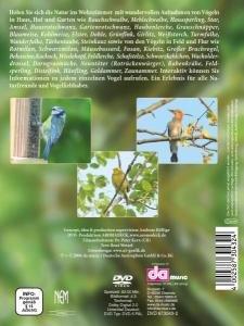 Heimische Vögel-Haus,Hof,Garten