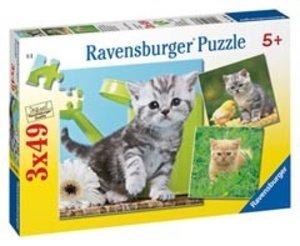 Ravensburger 09308 - Katzenabenteuer, 3 x 49 Teile Puzzle