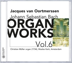 Organ Works Vol.6