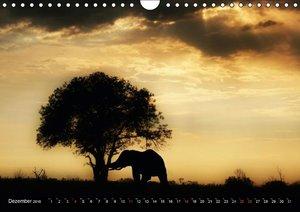 Naturschauspiel Afrika (Wandkalender 2016 DIN A4 quer)