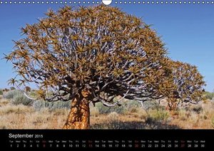 The beauty of Namibia 2015 (Wall Calendar 2015 DIN A3 Landscape)